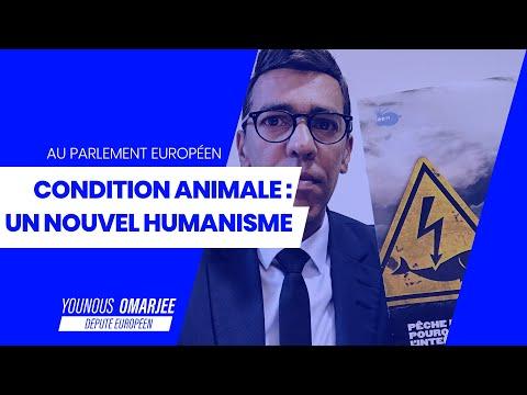 CONDITION ANIMALE : POUR UN NOUVEL HUMANISME