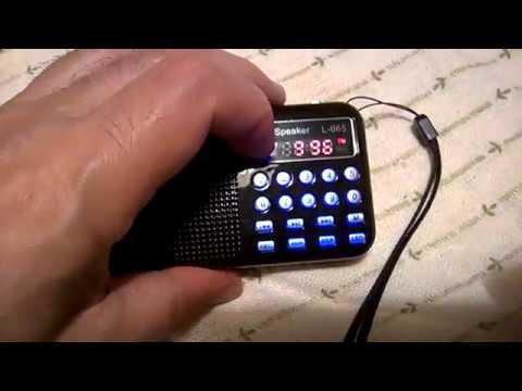 L - 065 Portable FM Radio MP3 Player