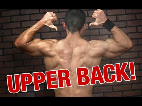 The Very Best Back Workout for Huge Traps and Back Gains