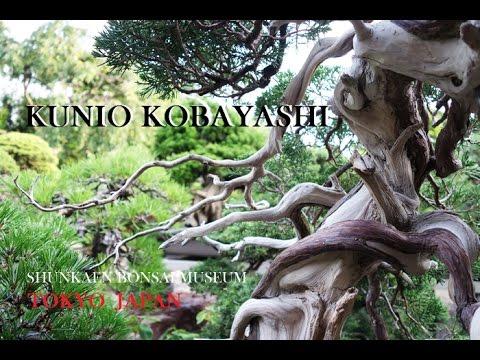 BONSAI Art Work  ‐KUNIO KOBAYASHI  小林國雄氏の春花園盆栽美術館 作品