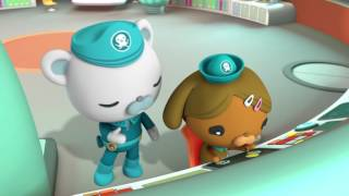Octonauts and the Long-armed Squid - Full Episode