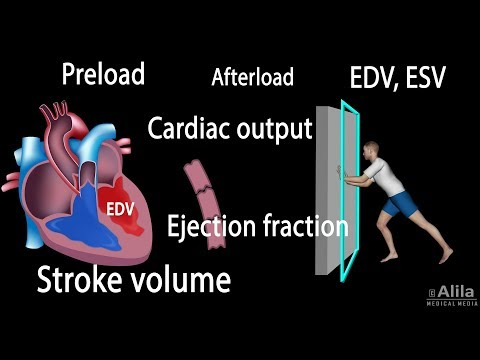 Cardiac Output, Stroke volume, EDV, ESV, Ejection Fraction