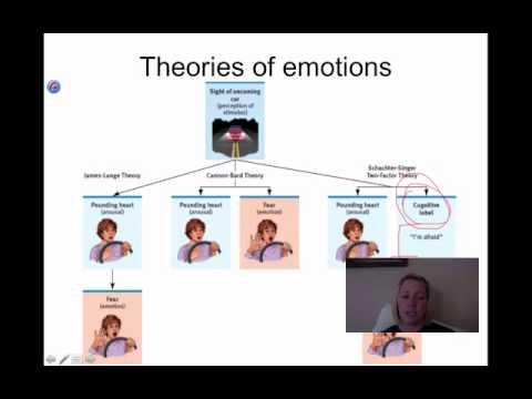 emotion and its theories Emotional intelligence (ei) the theory of multiple intelligences introduced the idea that traditional types of intelligence, such as iq.