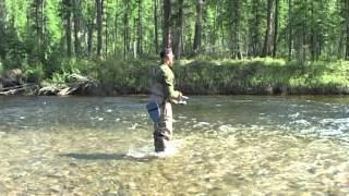 Рибалка в Якутії, Учур, таймень 30кг, 2 частина