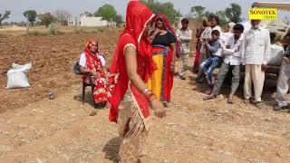 गेहूं काटने के बाद बहु ने किया खूबसूरत डांस पुरे परिवार की मस्ती   Haryanvi Song   Nai Bahu Dance