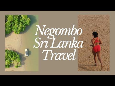 Travel Vlog | Watch This Before you Travel Sri Lanka | Negombo | Lagoon | #02