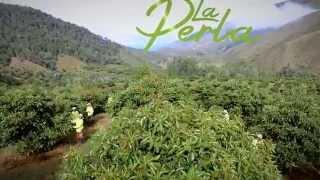 Video Institucional La Perla 2015