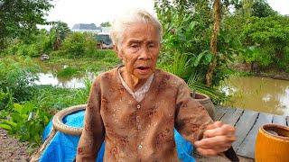 Cười ra nước mắt chuyện mang thịt heo đến tặng bà ngoại 97 tuổi hái rau dại