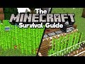 Sugar Cane Auto Farm! ▫ The Minecraft Survival Guide (1.13 Lets Play / Tutorial) [Part 10]
