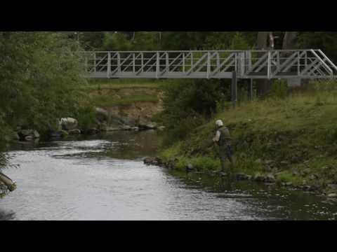 Rhyl & St Asaph Angling Association - Test Film