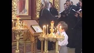 Собор Рязанских святых и епископ Василий Рязанский(, 2016-06-23T11:38:28.000Z)