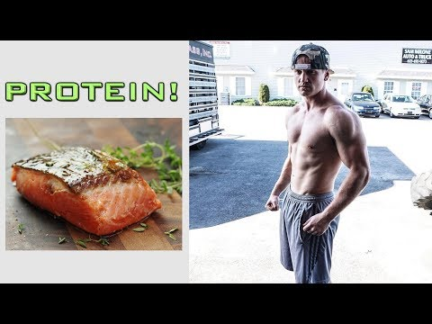 Best High Protein Low Calorie Foods!