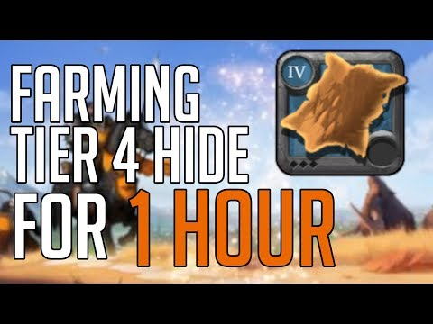 HOW MUCH MONEY CAN YOU MAKE FARMING T4 HIDE FOR 1 HOUR | Albion Online Economy Experiment