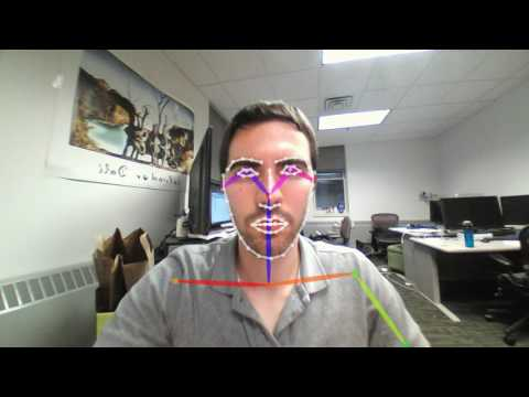 OpenPose multi-person face, body and hand keypoint detection demo