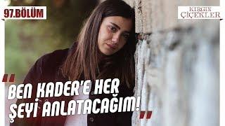 Gambar Meral, Kader'e Gerçekleri Açıklıyor Mu? - Kırgın Çiçekler 97.bölüm  Son Sahne