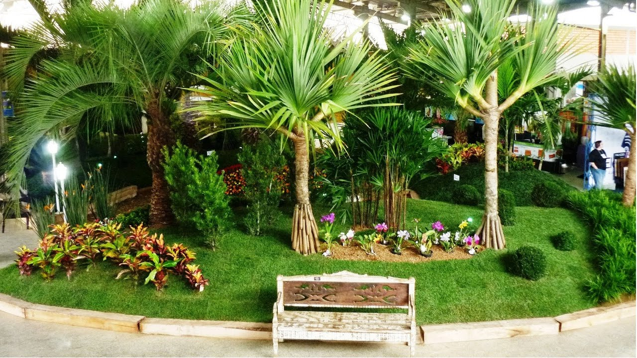 Viveiro de Plantas Ornamentais  Espécies de Grande Porte  YouTube