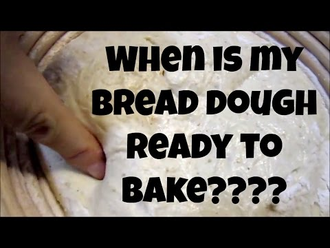 When is Bread Dough Ready to Bake? Final Proofing