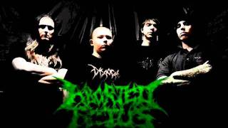 Aborted Fetus - Anal Deflorate