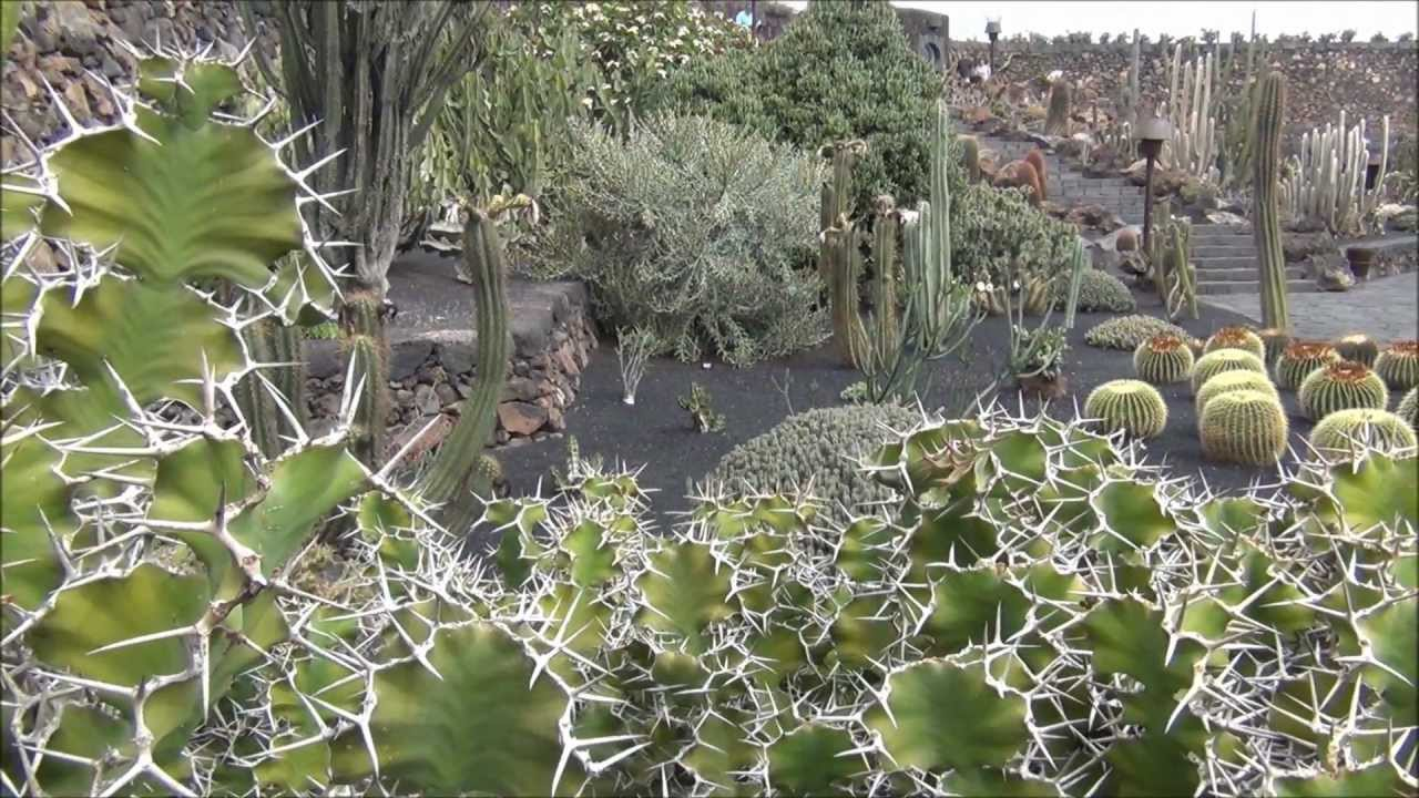lanzarote jardin de cactus youtube. Black Bedroom Furniture Sets. Home Design Ideas