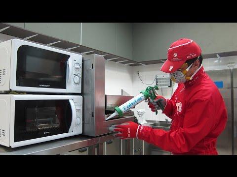 Как избавиться от тараканов. Профессиональный видеообзор.http://eco-plus.spb.ru/cockroach.php
