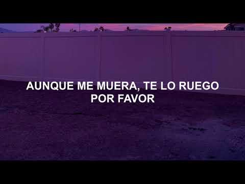 Steve Aoki & Backstreet Boys - Let It Be Me (Subtitulada Español)