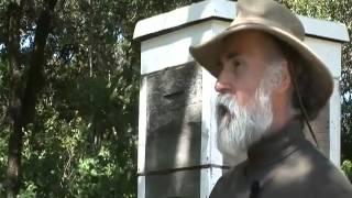 Abeilles  du bétail à miel dans les enclos des colonies humaines03