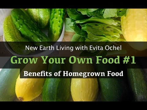 Grow Your Own Food [New Earth Living ep. 11]
