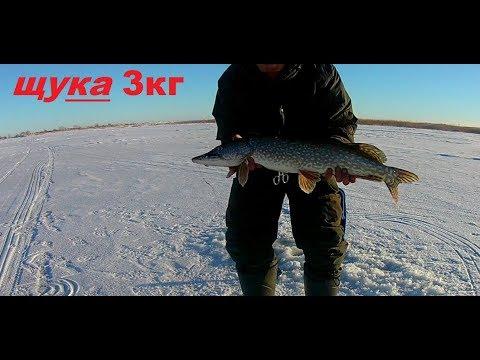 зимняя рыбалка на щуку. обзор озеро - белое озеро