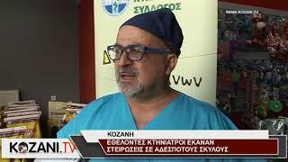 Εθελοντές κτηνίατροι πραγματοποιούν στειρώσεις στην Κοζάνη