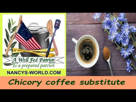 Chicory coffee substitute
