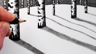 How to Draw Birch Trees in the Snow: Pencil Drawing