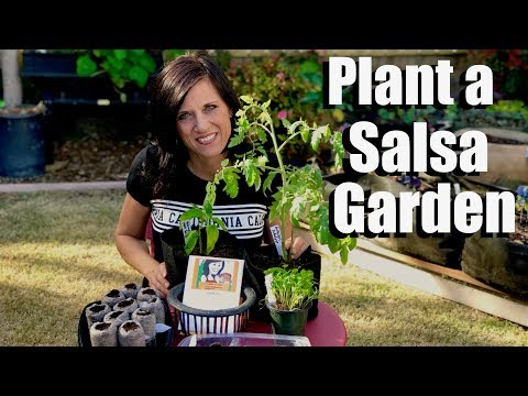 How to Plant a Salsa Garden - Starting Seeds Indoors for Tomatoes, Peppers, Onions, and Cilantro