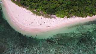 Dao Island   A Private Island For Sale In Palawan Philippines