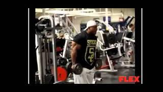Phil Heath Biceps & Triceps Training Clips.flv