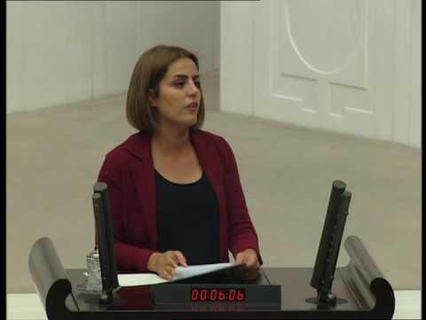 Ayşe Acar Başaran 'Ben Evine Ateş Düşenlerden Biriyim'