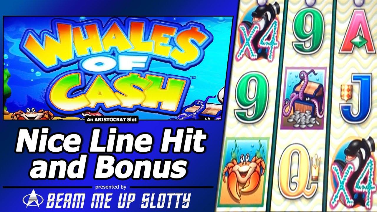 whale of slot machine free
