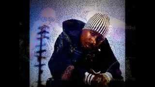2Pac feat  Richie Rich - Heavy in the Game