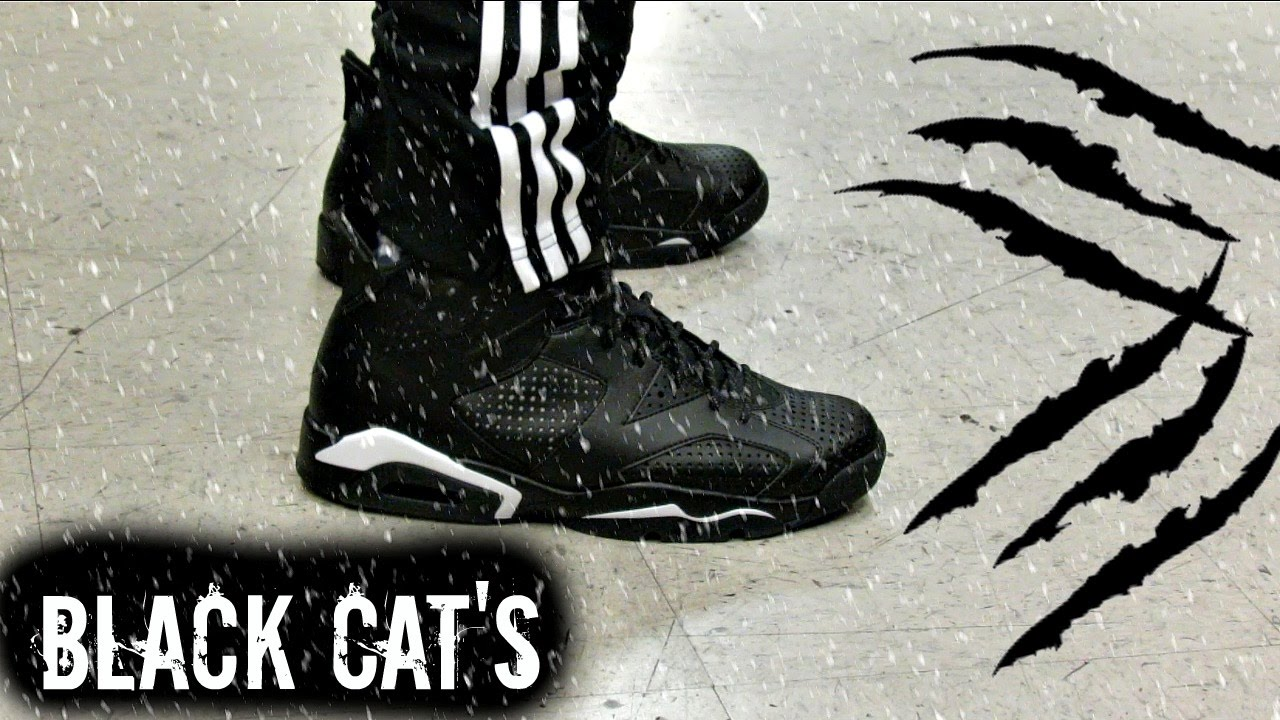 jordan 6s black cat