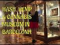 CANNABIS & HEMP HISTORY   Museum Tour   CoralReefer