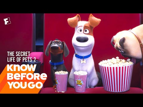 Know Before You Go: The Secret Life Of Pets 2   Movieclips Trailers