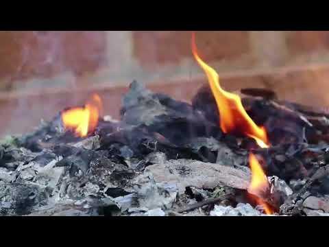 Ganda Kaam   Short Film of the Day