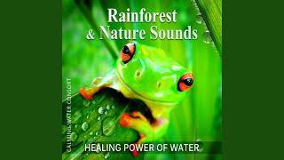 Rain Dance – Rain Sounds Music