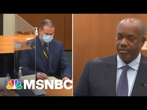 Chauvin Trial Witness Says She Has Stayed Up Apologizing To George Floyd For Not Doing More   MSNBC