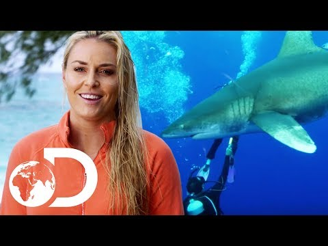 Lindsey Vonn Gets Surrounded By Aggressive Whitetip Sharks | Monster Tag | SHARK WEEK 2018