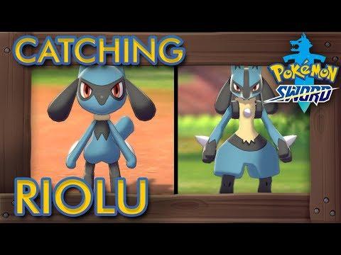 Pokémon Sword & Shield - How To Catch Riolu & Evolve It Into Lucario