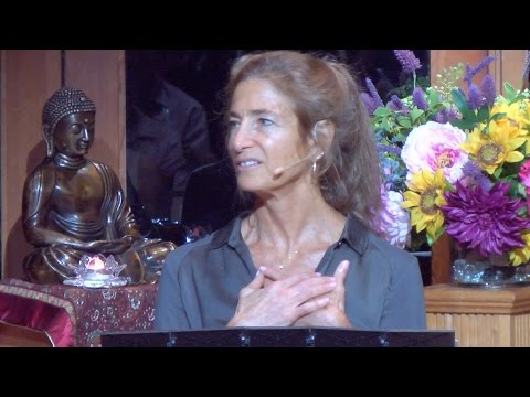 Radical Acceptance Revisited - Tara Brach