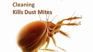 Flea Control Pest Cleaning Kills Dust Mites