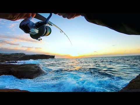 WHATTT?!?! Can't Believe This Happened.. | Rock Fishing Australia