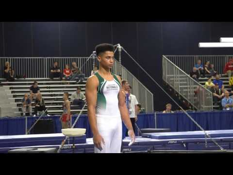 Jordan Williams - Parallel Bars - 2017 Winter Cup Prelims