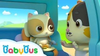 Baby Kitten Unties Seat Belt |…